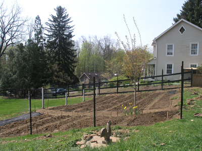 2009: The grass is removed, the borders are defined, and the deer fencing is up.