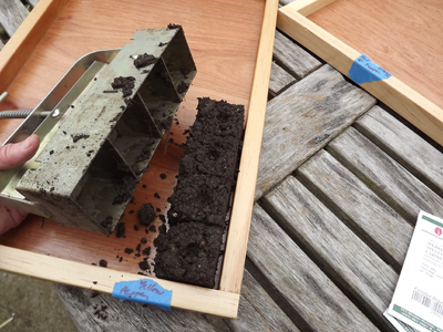 The first soil cubes go into the tray.  Ready for planting!