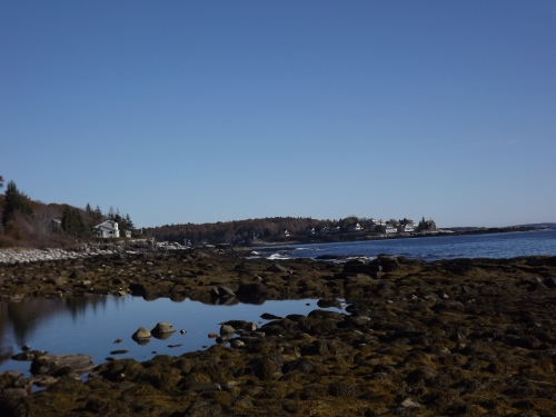 The ocean, the land, and that very compelling tidal pool.