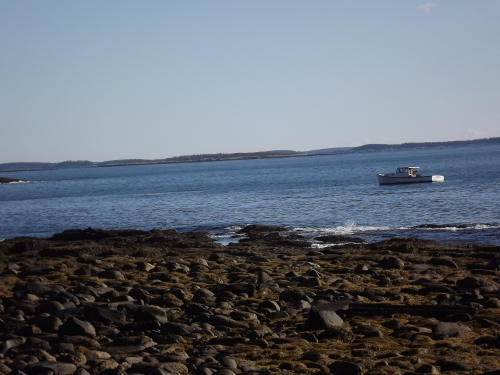 Just offshore, a lobsterman hauls up his traps.